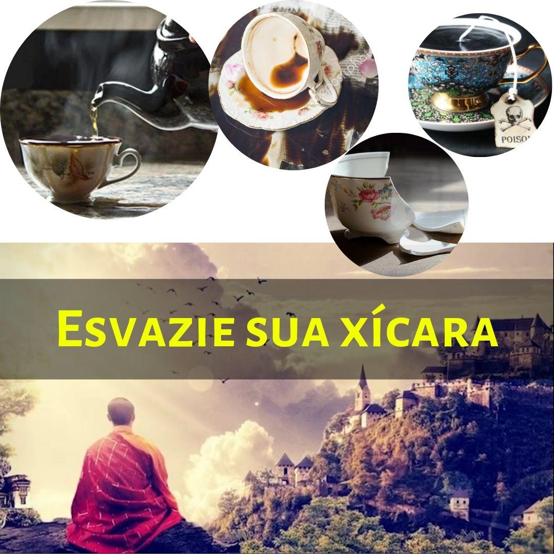 Xícara Vazia – Conto zen sobre humildade